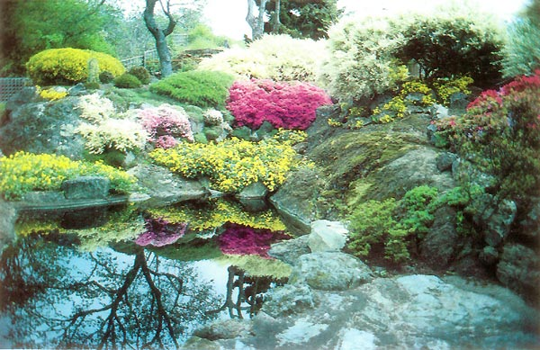 Jars 43n1 victoria the old and the new ars convention 1989 for Landscaping rocks victoria bc
