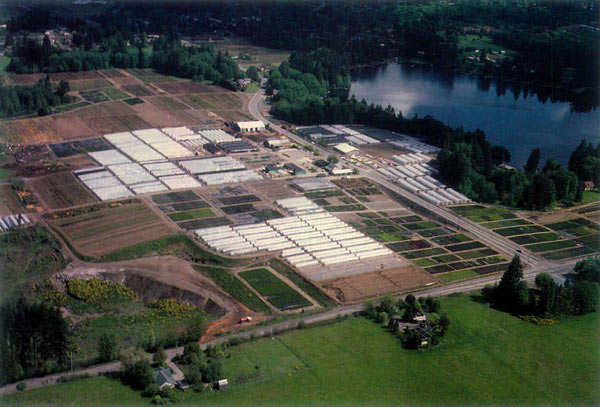 Briggs Nursery Olympia Washington