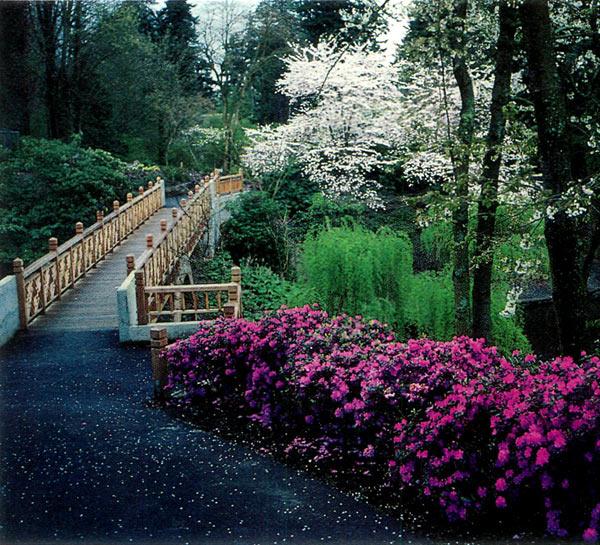 Jars v9n1 50th celebration convention portland oregon may 10 14 1995 for Crystal springs rhododendron garden