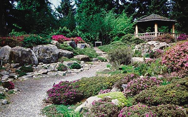 Rhododendron Species Botanical Garden