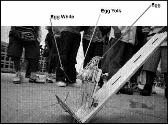 egg car crash project