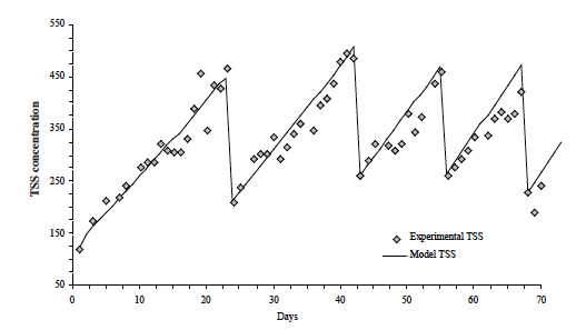 Figure 10. Predicted and measured TSS concentration for an autotrophic /heterotrophic system without carbon supplementation with periodic harvesting of excess bacterial biomass.