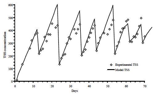 Figure 11. Predicted and measured TSS concentration for a heterotrophic             system with carbon supplementation at 50% of feed rate as sucrose and             periodic harvesting of excess bacterial biomass.