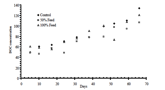 Figure 13. Dissolved organic carbon (DOC) concentrations for the three treatments (control, sucrose at 50% and 100% of feed rate) over the 10 week research period.