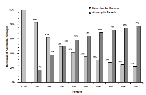 Figure 2. Percent removal of ammonia-nitrogen by heterotrophic or             autotrophic processes as a function of % protein.
