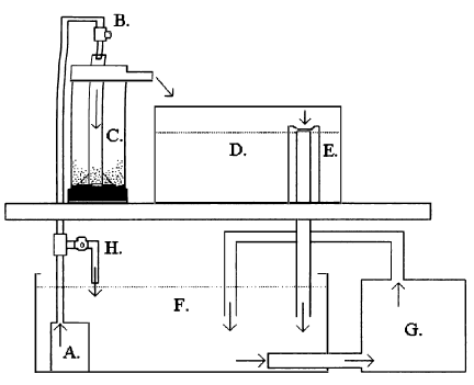 Comparisons Of Tilapia Seed Production Under Various Broodstock